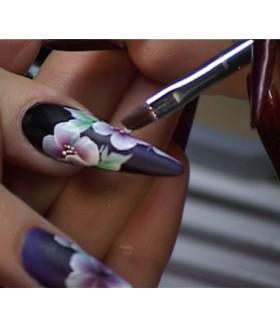 DVD (r) художественная роспись ногтей